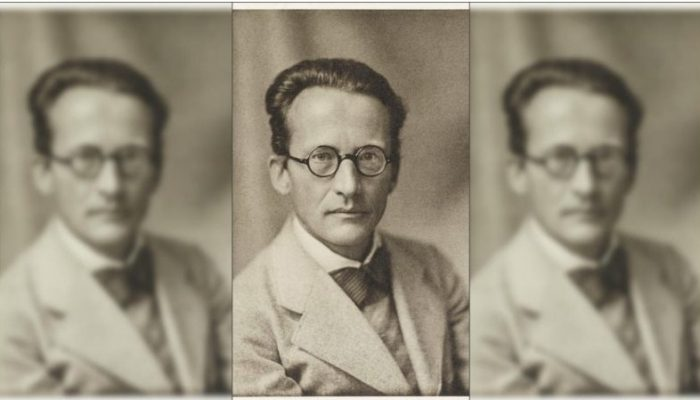What Erwin Schrödinger Views And Thought About the Upanishads